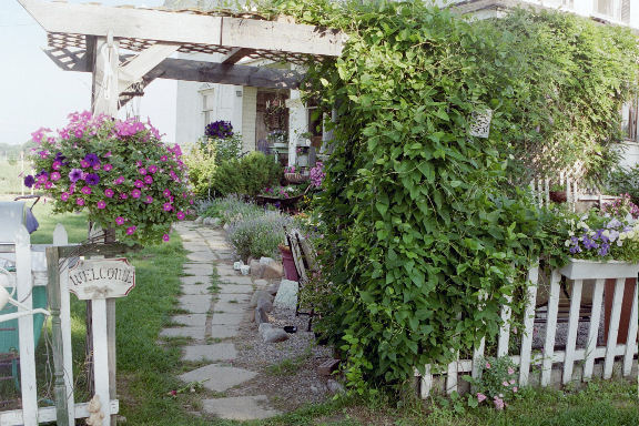 Garden Rooms | For Dragonflies And Me