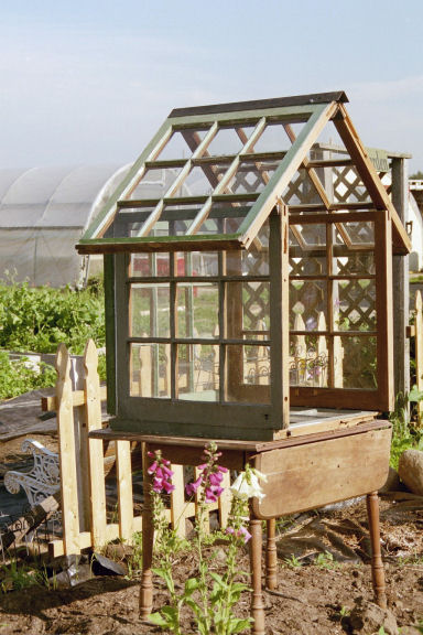 Build Small Greenhouse This Is My Mini Window Green House It S So Happy
