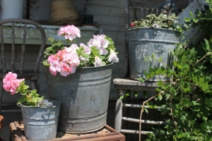 Buckets on my porch