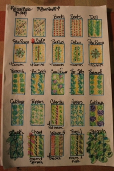 My 2014 raised bed garden plan
